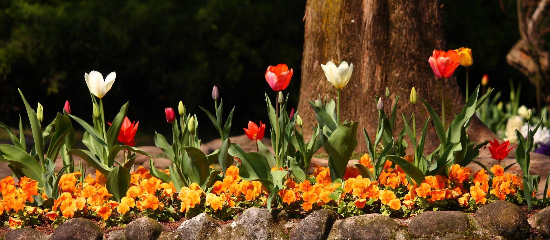Botanischer Garten Hruska In Gardone Entdecke Den Gardasee
