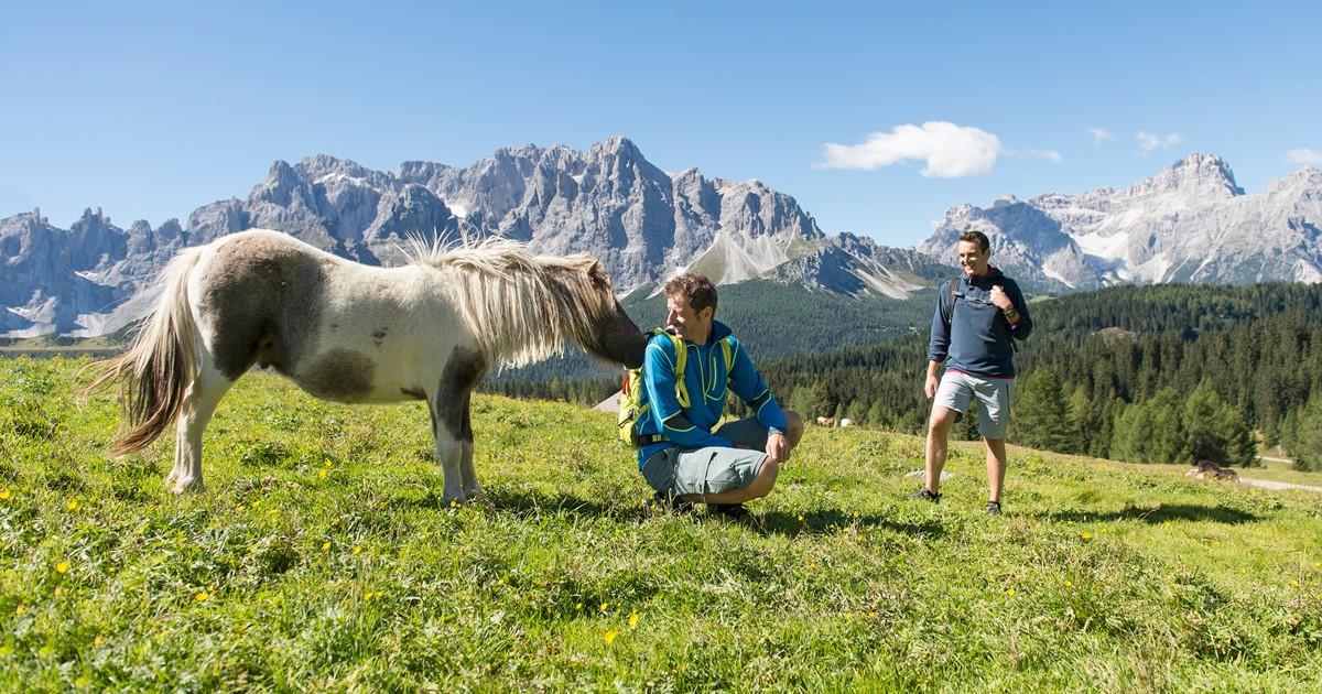 Vacanze un po\' diverse: volontariato in montagna