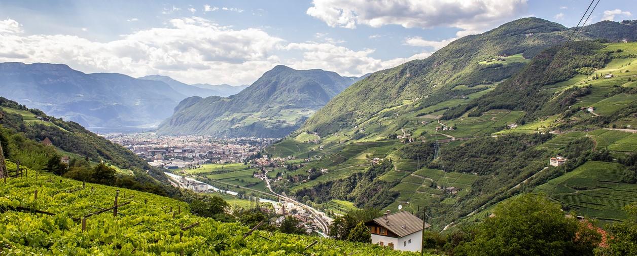Campeggio a bolzano e dintorni for Cavalli bolzano